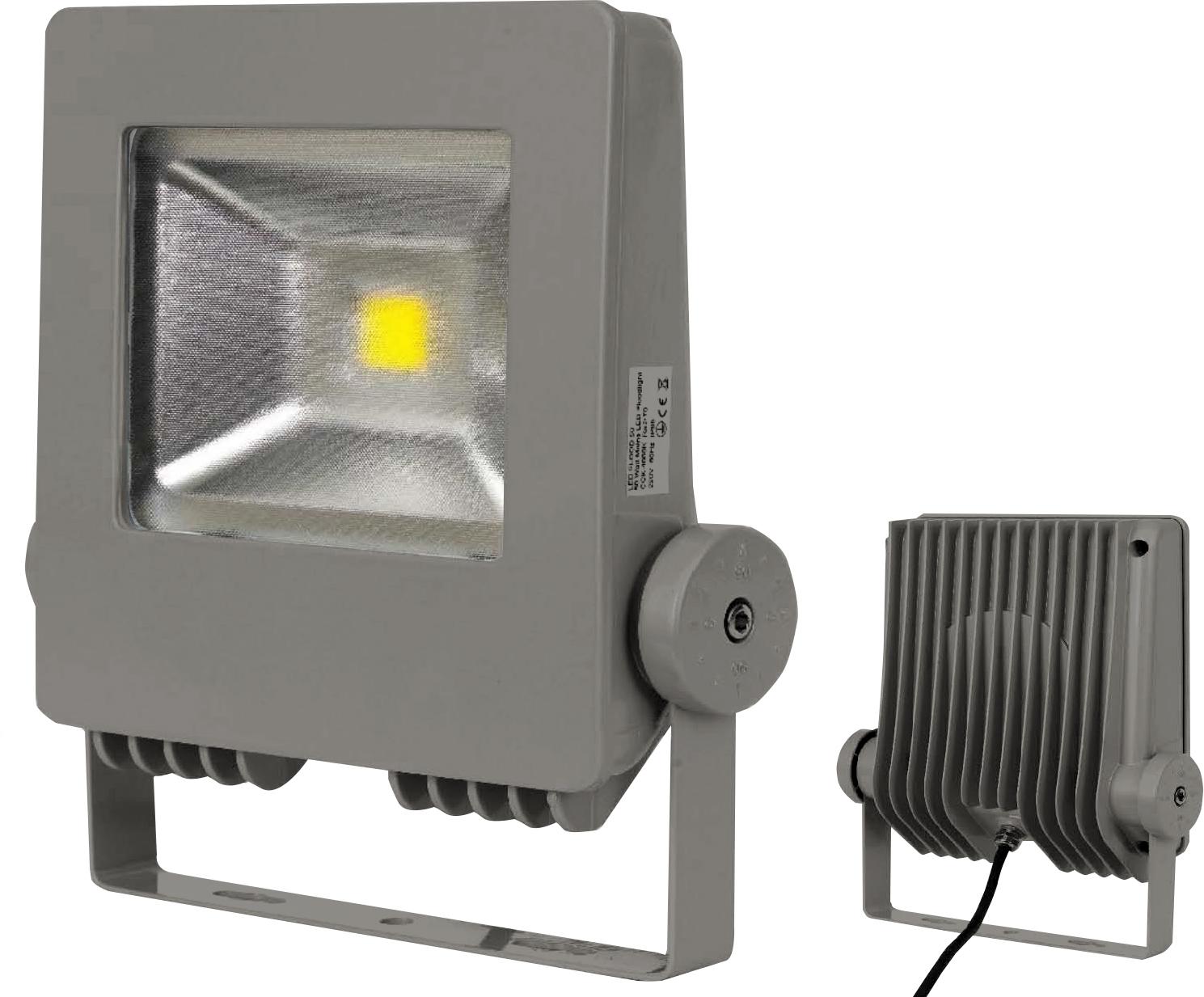Olly II LED