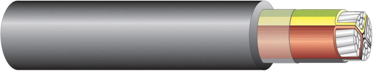 SE-N1XE-AS 4G50 AS