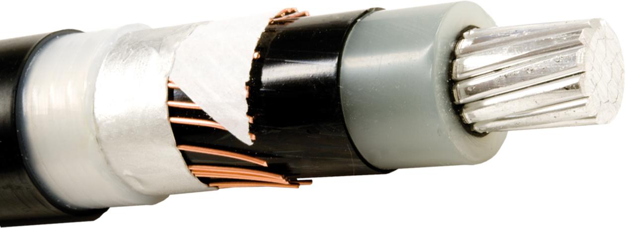 AXLJ-F TTCL 1X50/16 12KV T1000